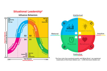 Situational Leadership and Whole Brain Thinking