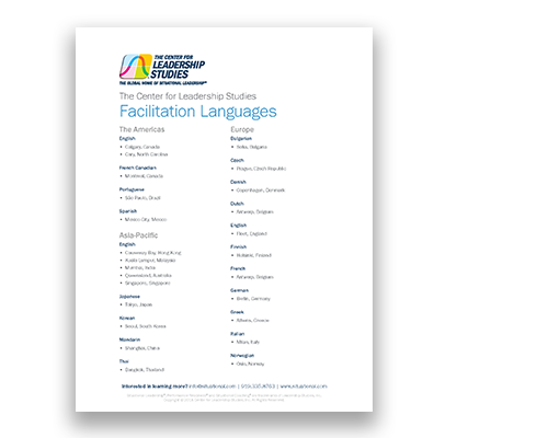 Facilitation languages flyer cover